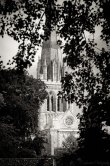 Chichester Catherdral