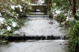Bushy Gardens