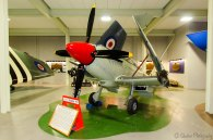 Supermarine Seafire F17 (SX137)