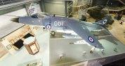 Sea Harrier FRS.1 (XZ493)