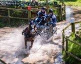 Carriage Racing